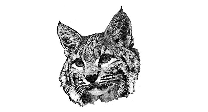 Wengert ES logo