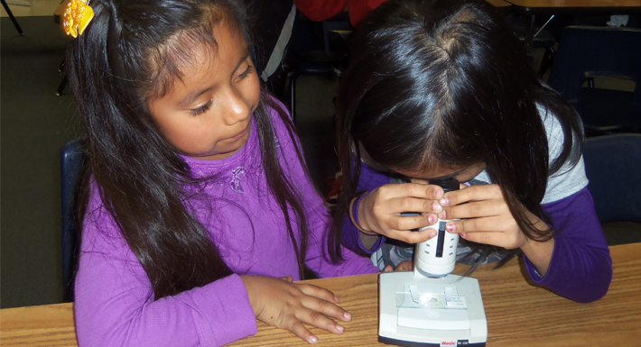 Magnet Schools - children use microscope