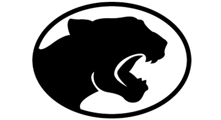 Palo Verde HS logo